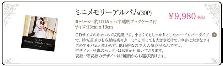 ミニメモリーアルバム(30P)